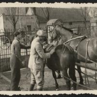 Pyzdry. Zaprzęg konny przy bramie wyjazdowej na ul. Zamkową, z posesji p. Szymczaków. /lata 30 XX w./